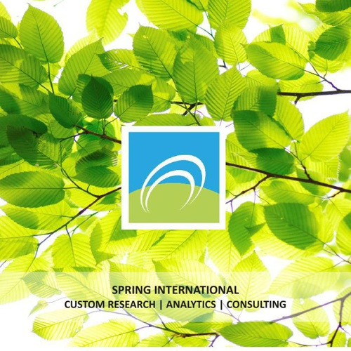 Spring International Solutions and Services