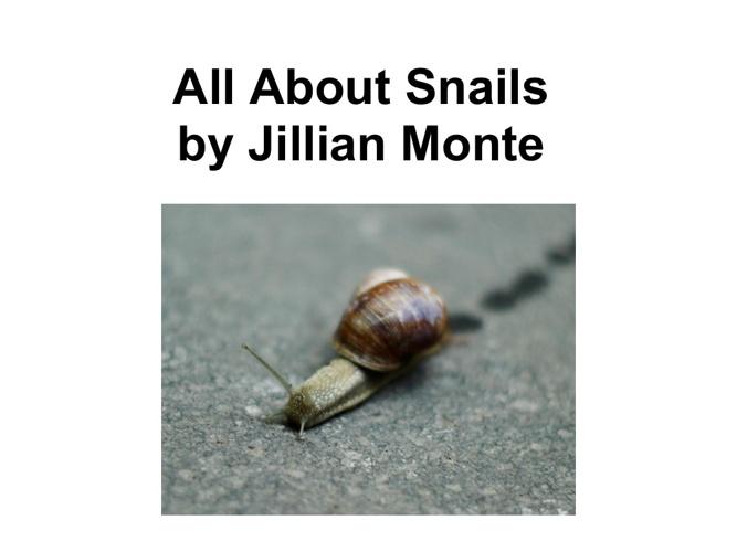 Jillian's snail book