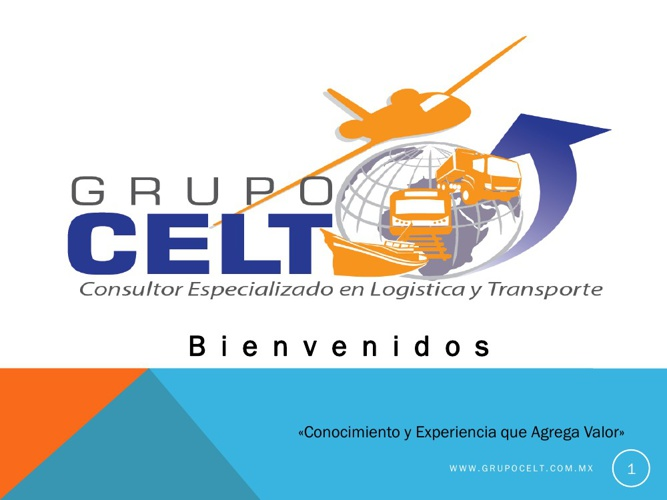 Proceso de Consultoria Grupo Celt 2013