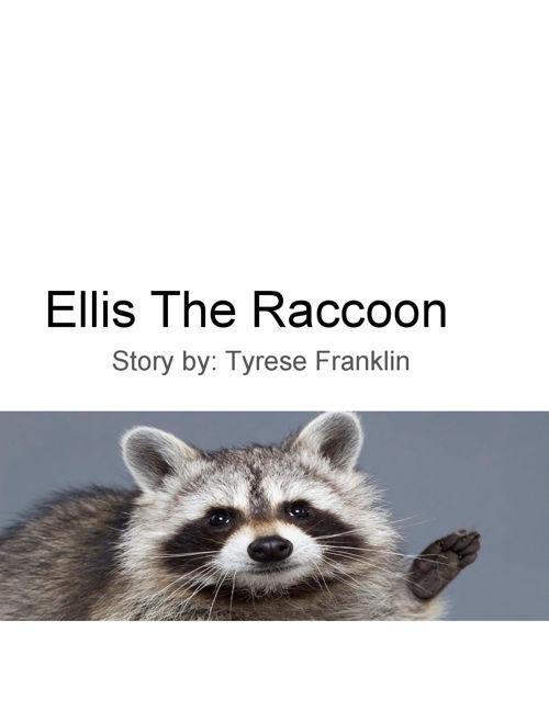 Ellis the Raccoon