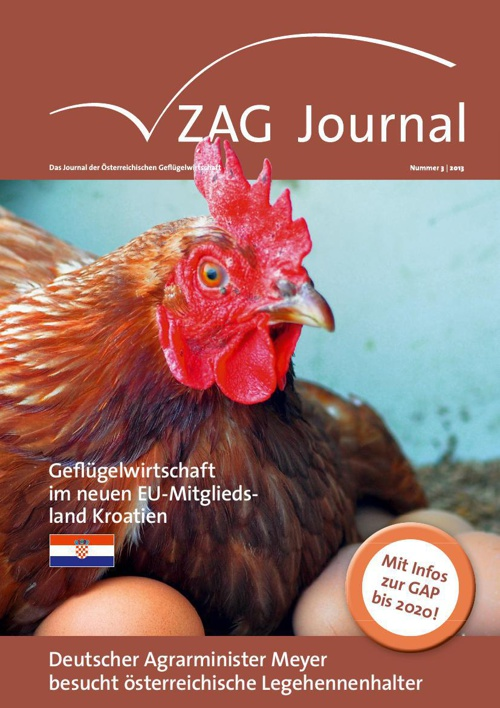 ZAG Journal 03 2013