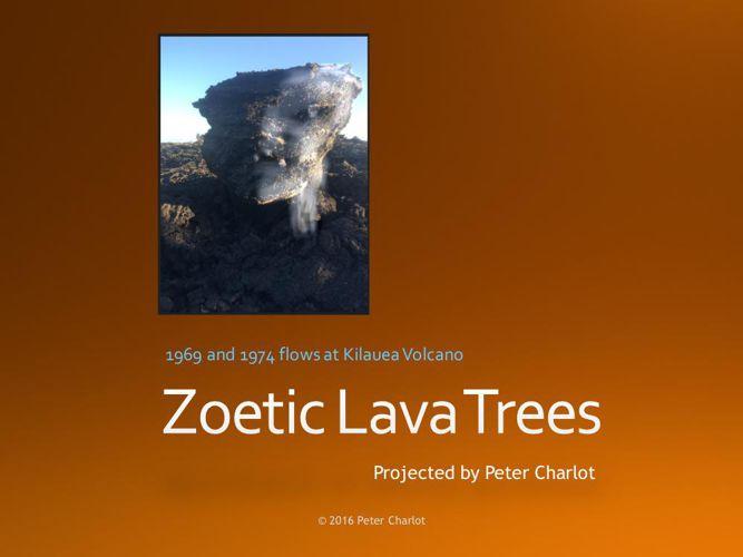 Zoetic Lava Trees