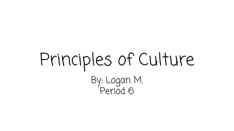 Principles of Culture Project