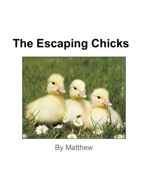 Realistic Fiction Matthew Majewski