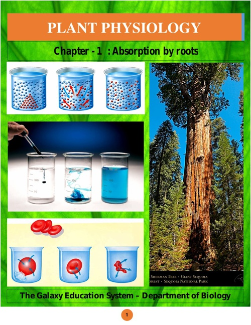 1.Absorption by roots - Ebook