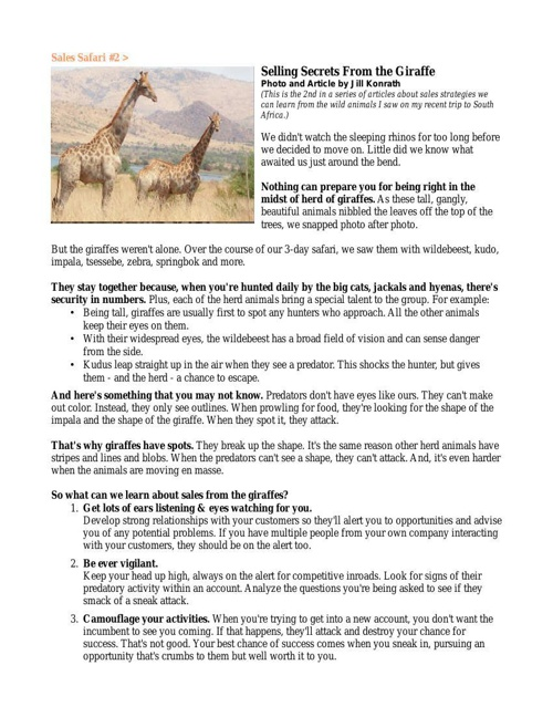Selling Secrets of the Giraffes