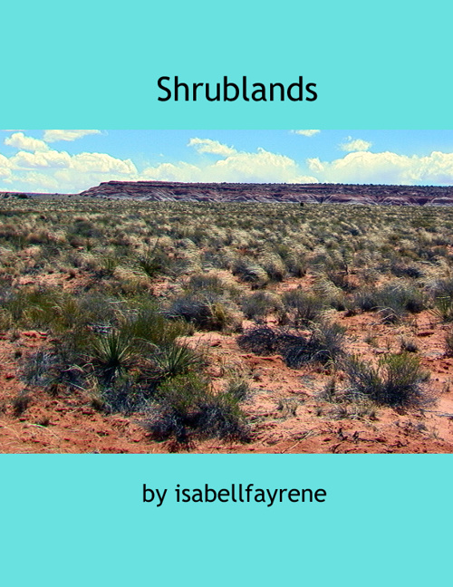 Shrublands by Isabell
