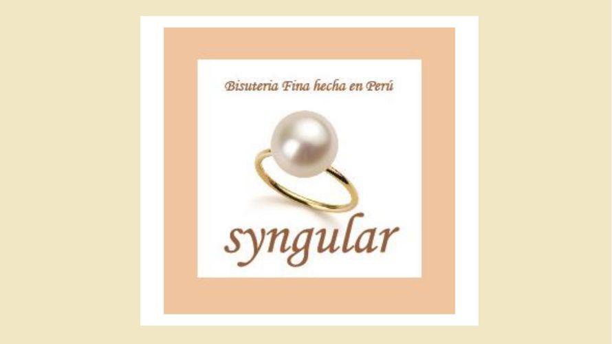 presentación Syngular