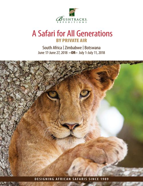 A Safari for All Generations 2018