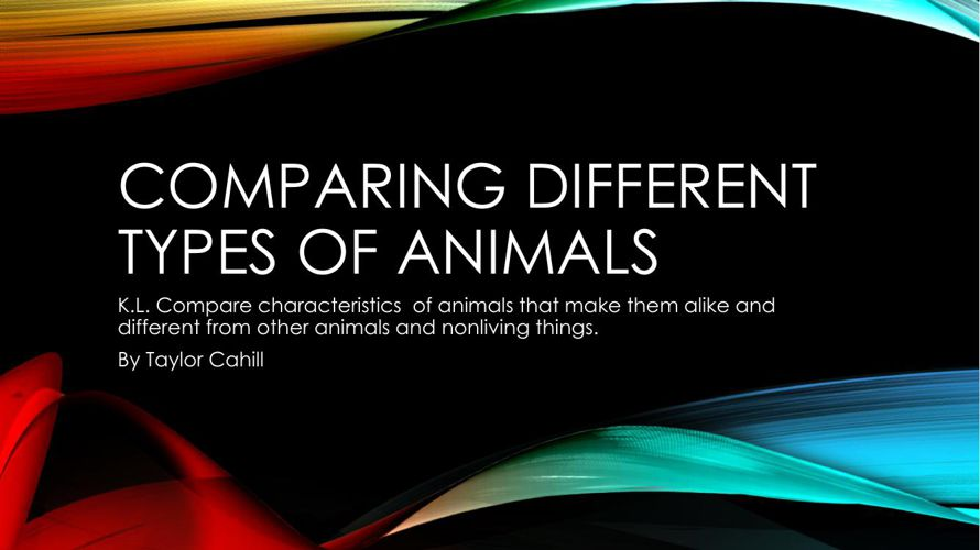 different types of animal abuse