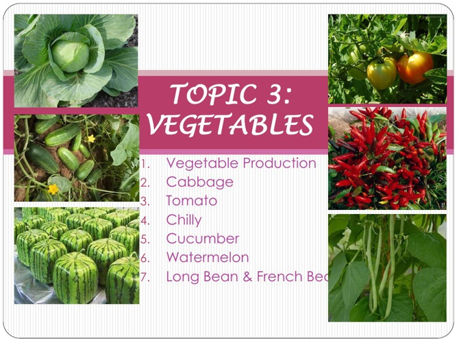 CHAPTER 3: Topic 2 & 3 (Vegetable production)