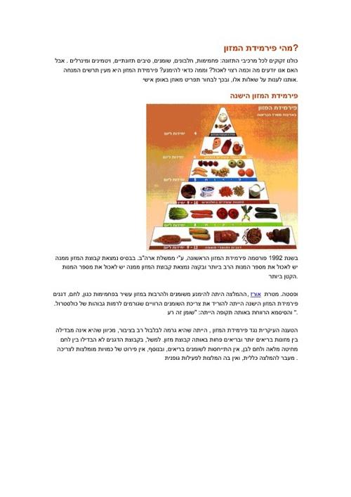 פרמידת המזון