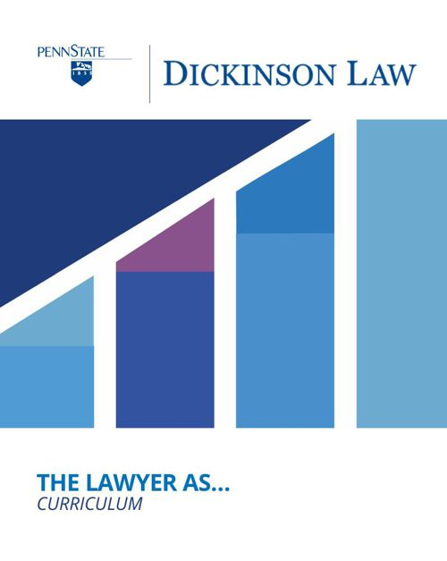 The Lawyer As, Curriculum