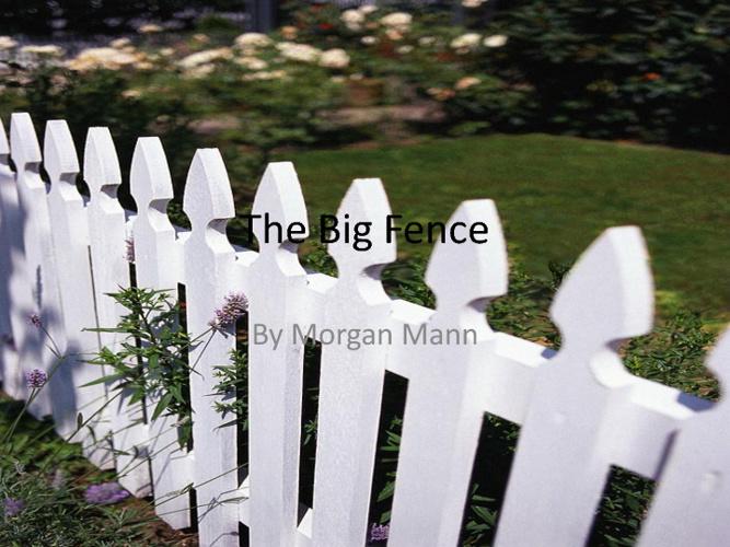 Morgan Mann