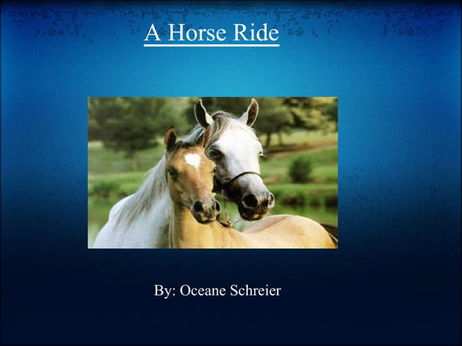 A Horse Ride