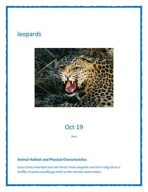 animal report  leopard
