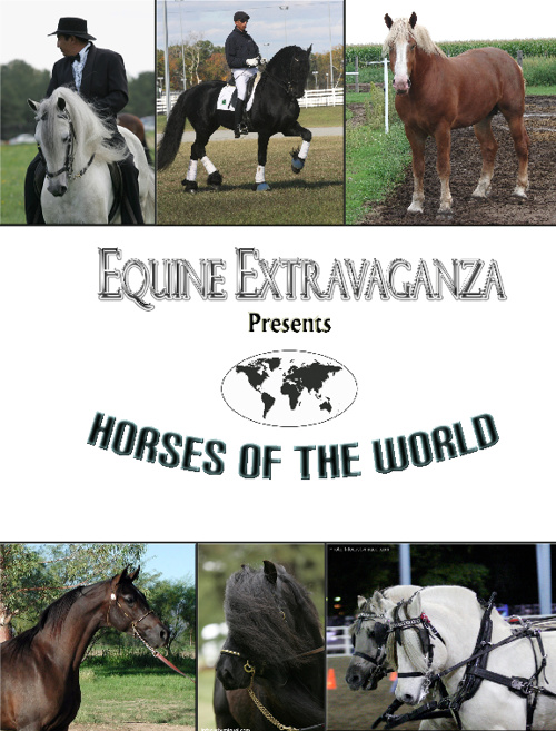 Equine Extravaganza Horses of the World