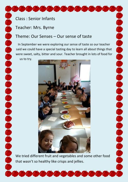Exploring Our Sense of Taste