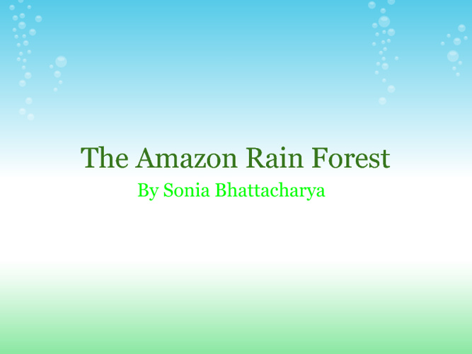 Amazon Rain Forest By Sonia