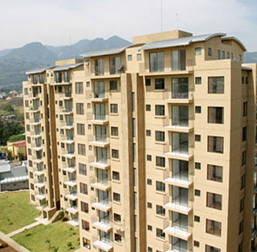 Dena Real Estate