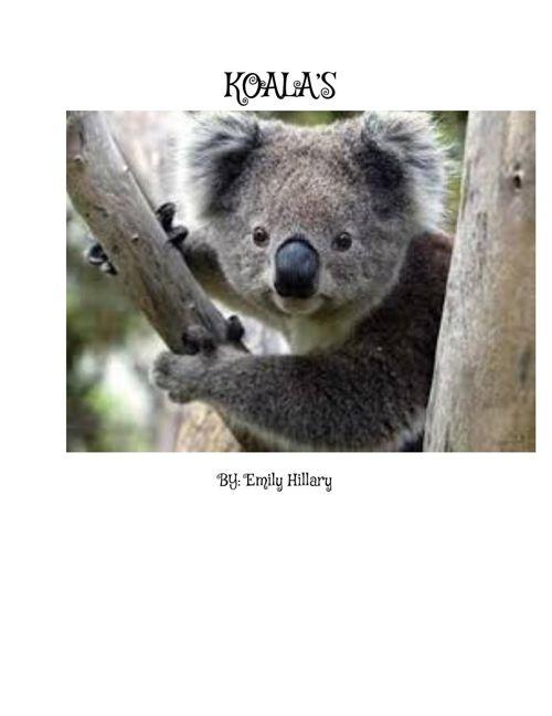 KOALAS-EMILYHILLARY