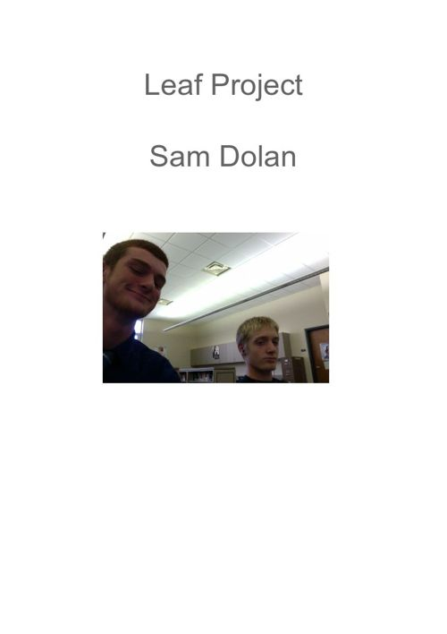Leaf Project Sam Dolan
