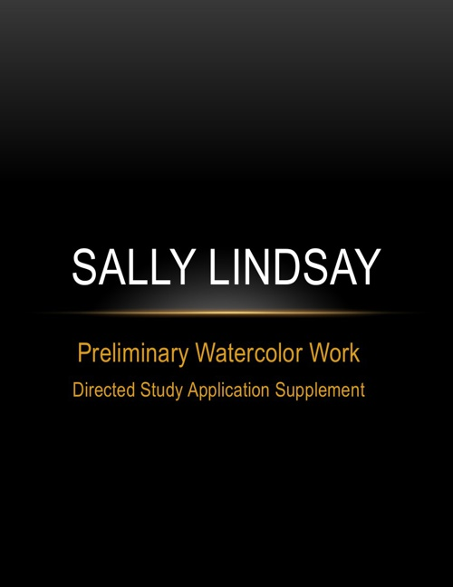 Sally's Introductory Work