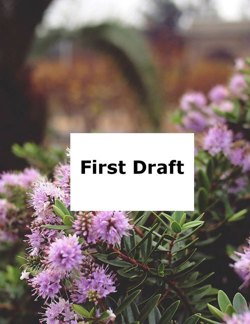 1 draft