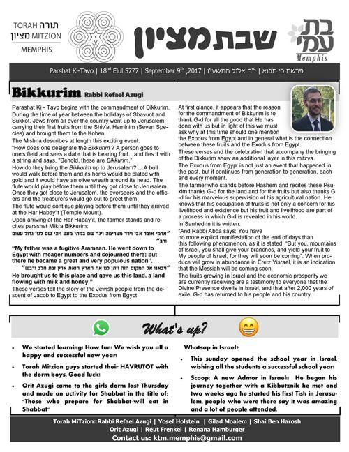 Shabbat MiTzion newsletter