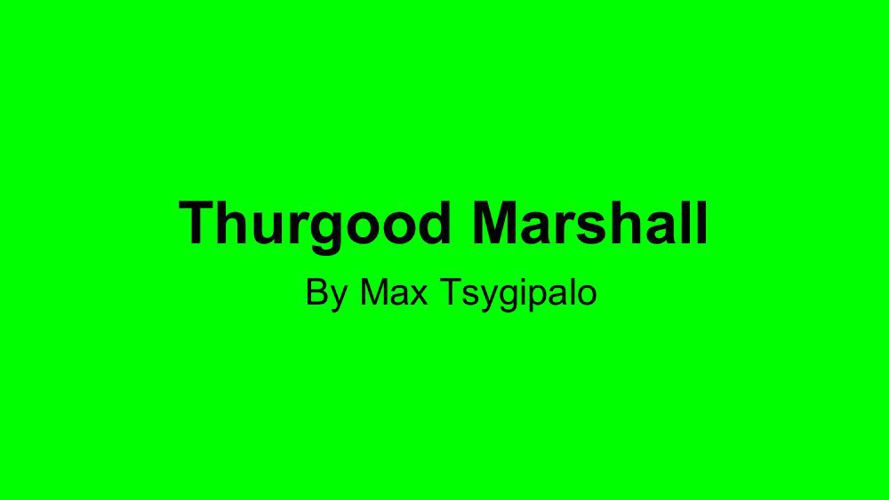 Biography Flipbook - Maxim Tsygipalo