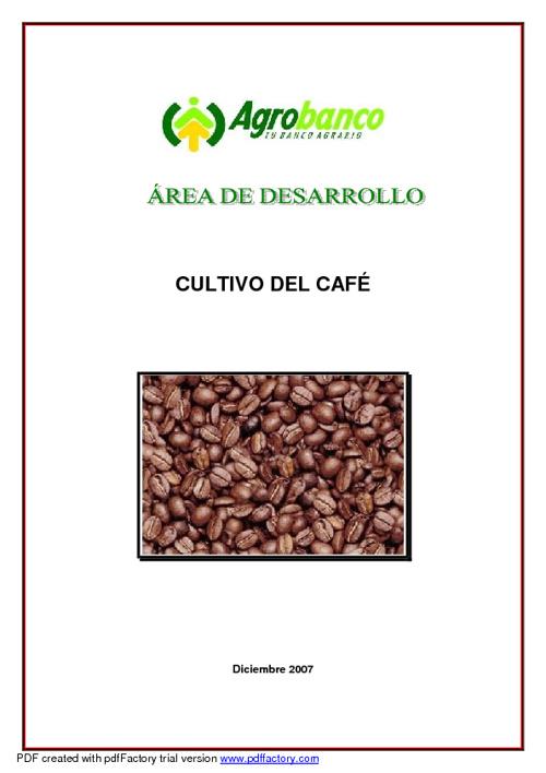 Comercio Justo del café