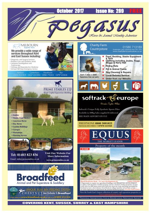 Pegasus October online magazine