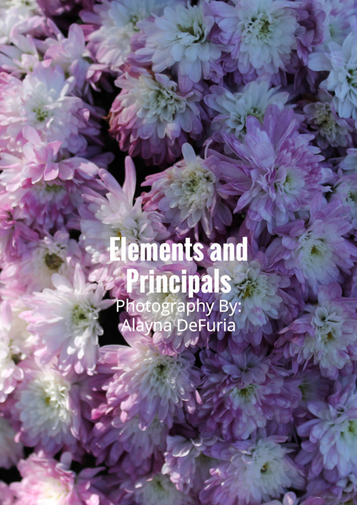 Elements and Principals