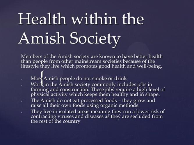 Amish Factsbook