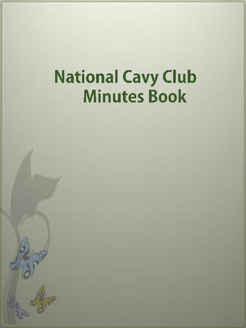N.C.C. MINUTES BOOK