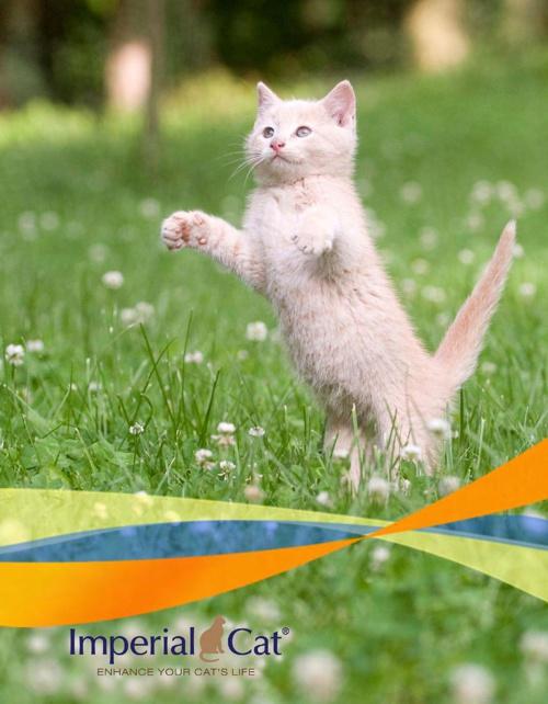 Imperial Cat 2015 Catalog