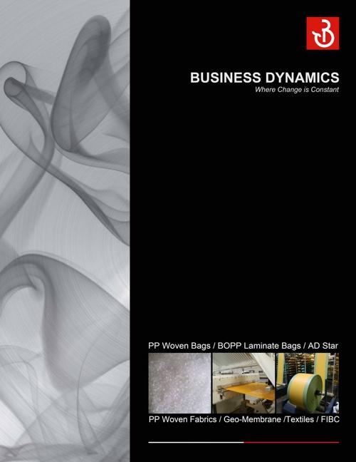 Business Dynamics Pg 1