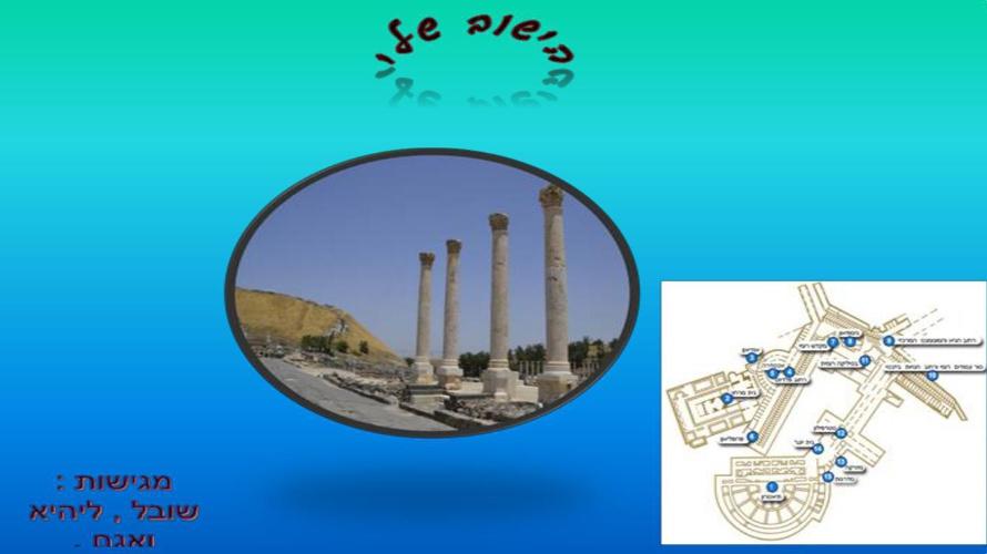 בית המרחץ ורחוב פלאדיוס