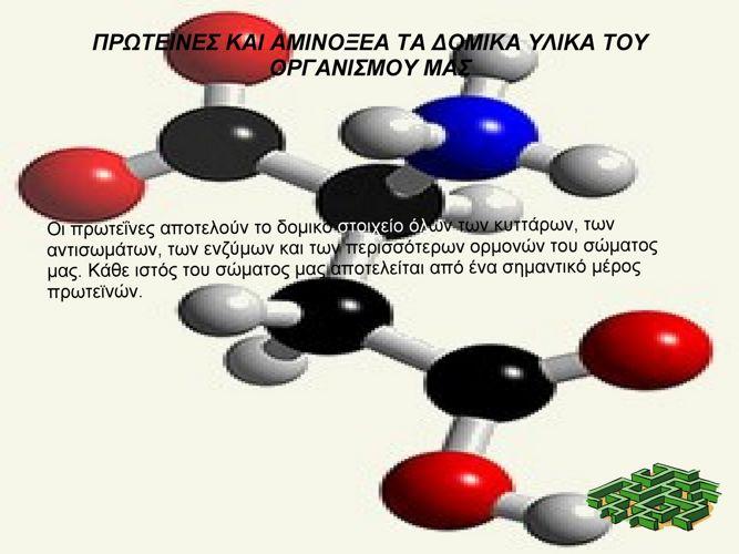 Proteines -ΚΩΝΣΤΑΝΤΙΝΟΣ