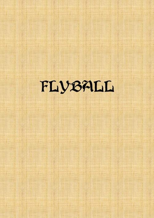 FlyBall Vol.1