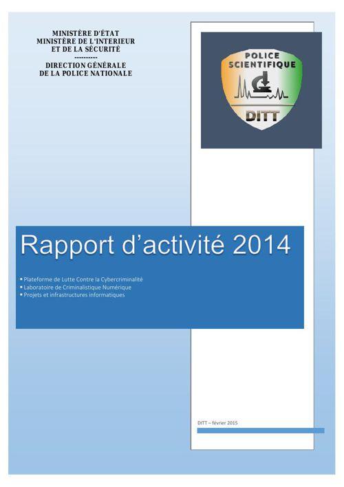 RAPPORT ACTIVITE DITT 2014