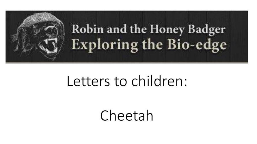 bio-bedtime_Cheetah_11March2015