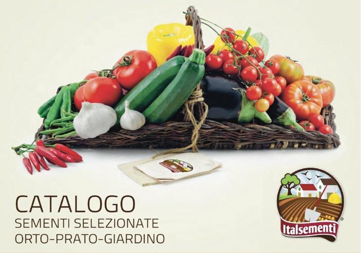 ITALSEMENTI - CATALOGO