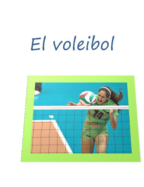 Libro de Voleibol