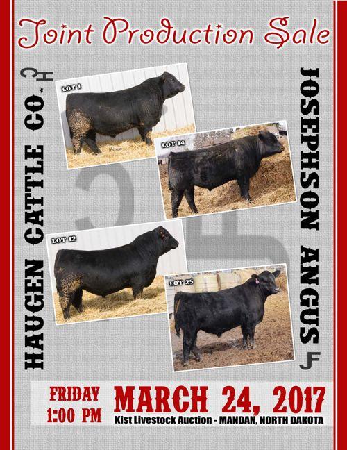 Haugen Cattle Co. & Josephson Angus Joint Production Sale