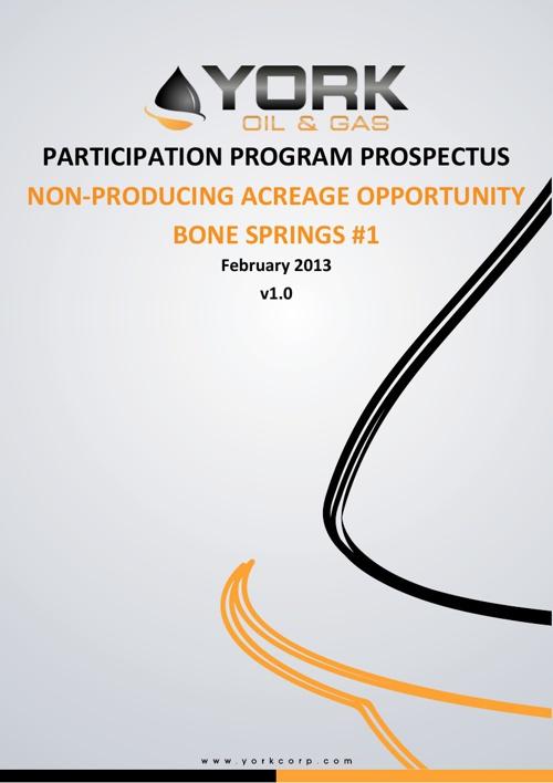 Bone Springs #1 NPAOPP Prospectus