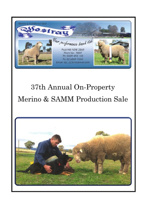 Westray Ram Catalogue 2013