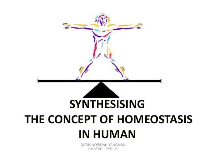 Copy of testing biology homeostasis
