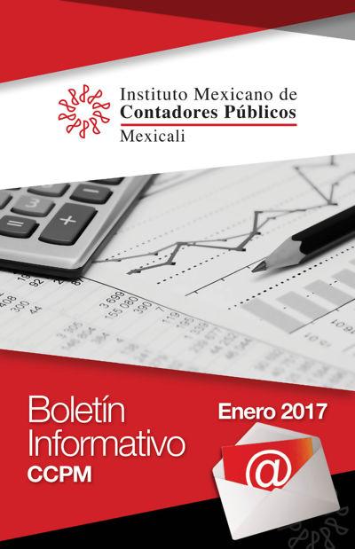 Boletín Informativo - Enero 2017