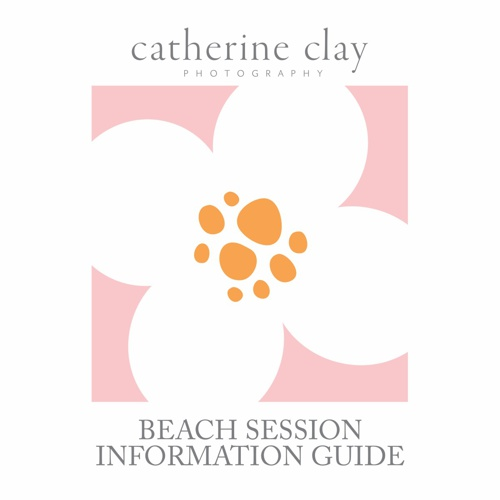 Beach Session Information-Ordering